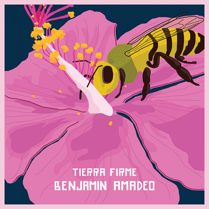 "Benjamín Amadeo presenta ""Tierra Firme"", su nuevo single y video!"